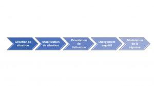 Schéma régulation des émotions