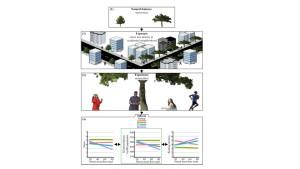 bien etre green well being psychologique performance ecologie environnement nature environnement cerveau